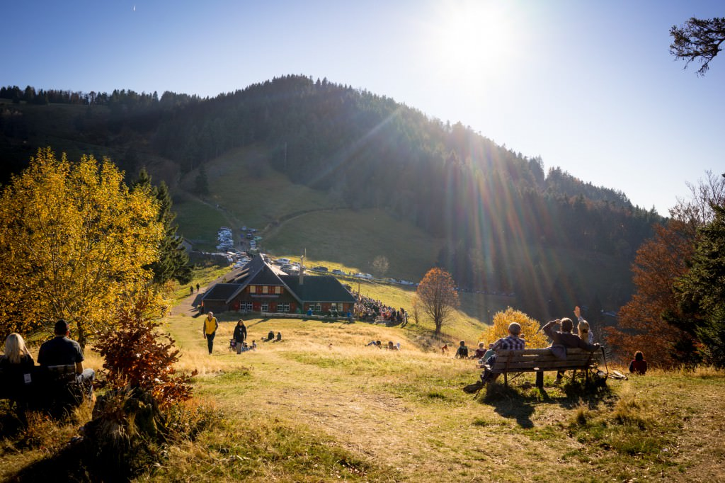 Kälbelesschauer im Schwarzwald